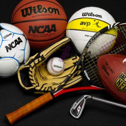 Sports Goods, Toys & Games Manufacturers from India