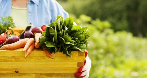 Return to your Healthy Tradition by choosing Organic Farming